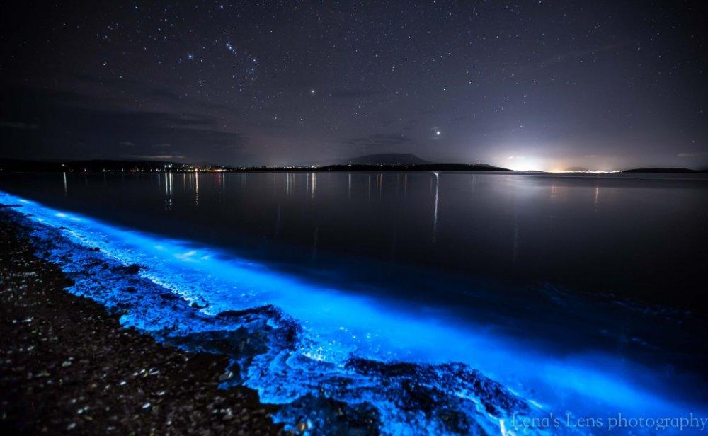 Zářící mořská hladina, foto: Leena-Wisby