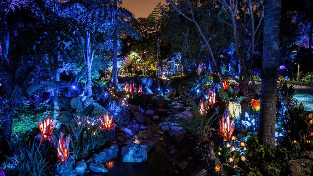 Noční Pandora, foto: Jay L. Clendenin