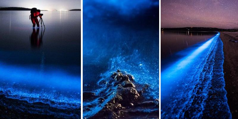 Magické snímky zářící pláže v Tasmánii